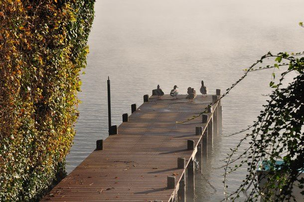 fin-oct-2014-lac-d-Annecy 1053
