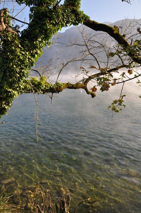 fin-oct-2014-lac-d-Annecy 1064