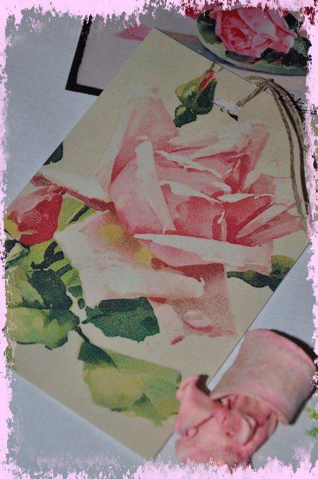 ronde-du-rose 0229