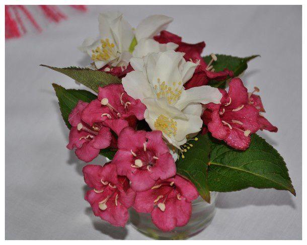 douceur-fleurie 0032