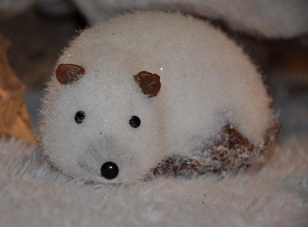 neige-et-bois 0763