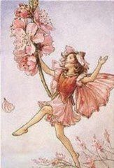 Cicely-Mary-Barker-The-Almond-Blossom-Fairy-107064.jpg
