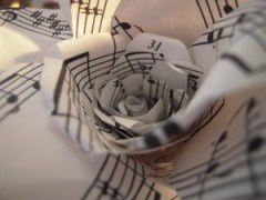 Musical Rose by ~So-chan18.jpg