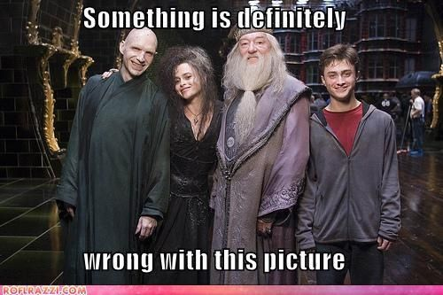 because-everyone-loves-harry-potter--large-msg-129574662177.jpg
