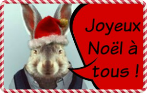 lapin-noel-a.png
