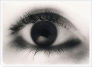 ojos.jpg