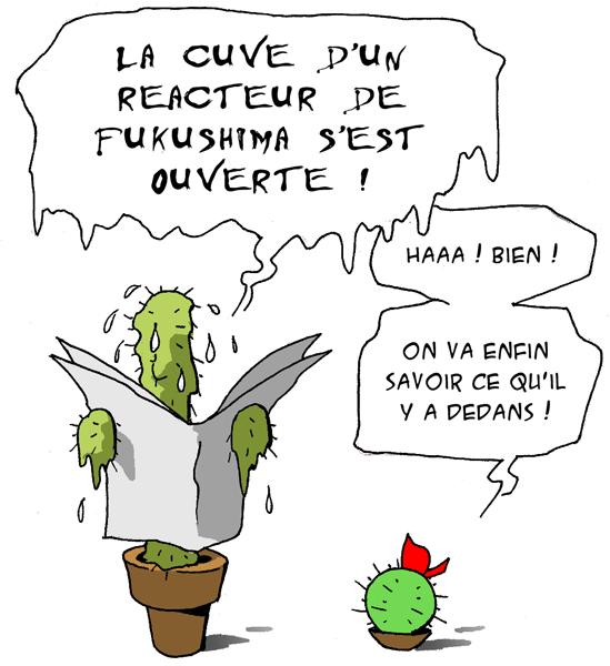 20110513_fukushima_coeur.png