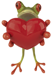 grenouille amour