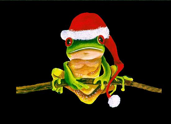 grenouille-noel.png
