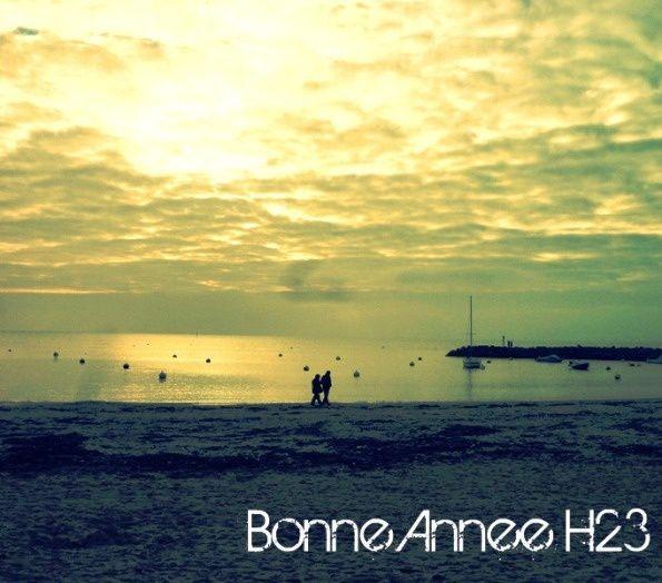 bonneanneeh232011-copie-3.jpg