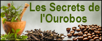 Lien blog Les Secrets de l'Ourobos