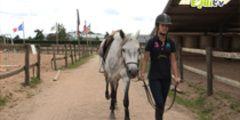 amener son cheval au manège