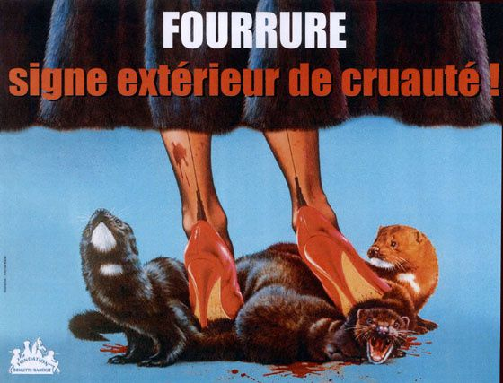 fourrure-20affiche560.jpg