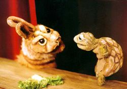 lapin-tortue