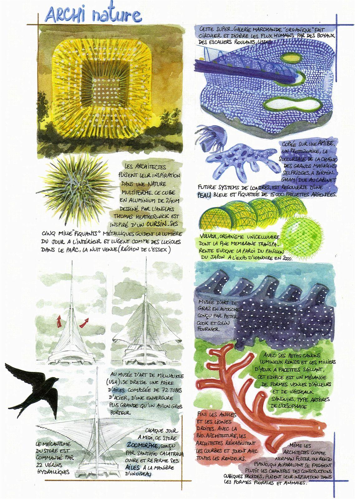 Archi-nature P.1