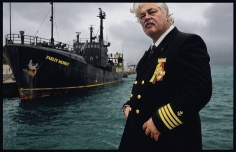 paul-watson-captain-fouder-sea_shepherd.jpg