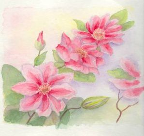 fleurs-de-printemps.jpg