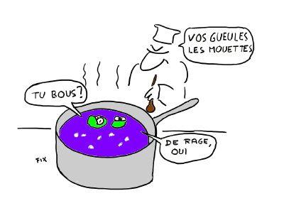 Grenouilles_bio-copie-1.jpg