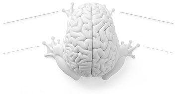 frog_brain.jpg