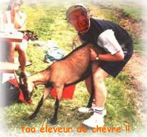 http://idata.over-blog.com/4/02/22/18/images-montages-mes-amis/montage-Tao/tao-eleveur.jpg