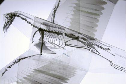Mitsubishi-Chemical-Junior-Designer-Award-Takayuki-Hori-2