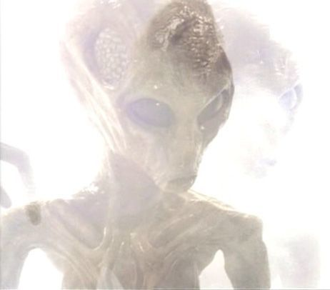 a-grey-alien-dark-skies-29955414-462-406