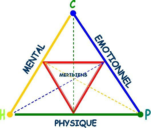 triangle-emotion-mental-physique.jpg