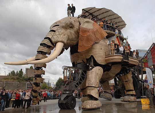 elephant_dehors1.jpg