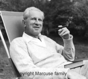 onfray_conferences_2013_marcuse_famille.jpg