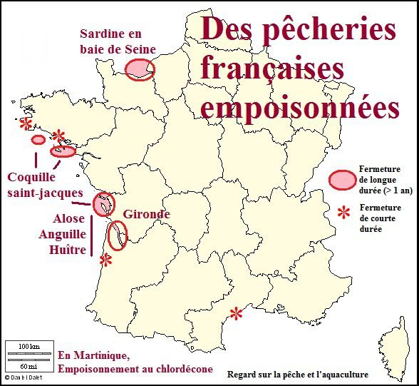 france-algue-ca-pcb---Copie.jpg