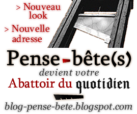 chgmt-adresse-pense-betes-carre.png