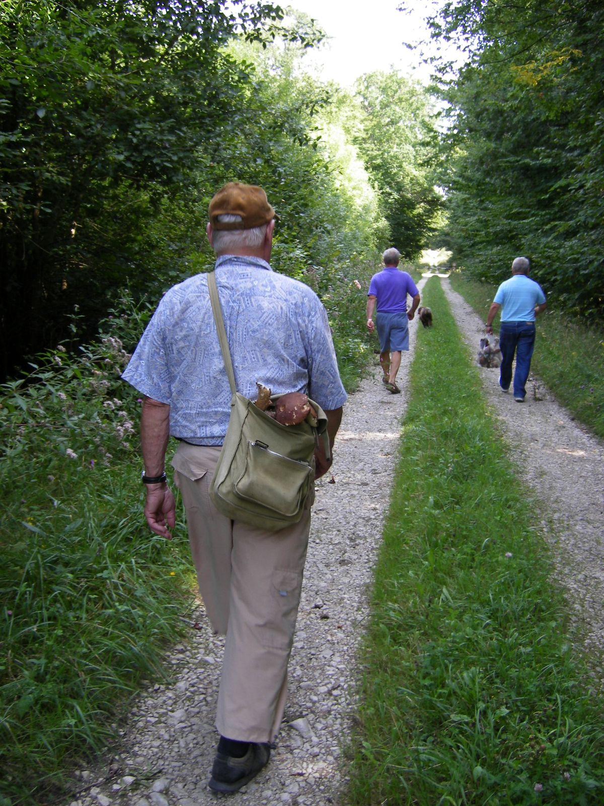 Marche et découverte de la nature  en côte d'Or