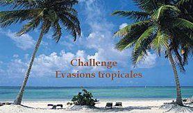 Evasions-tropicales-logo--3-