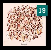 19-Syd-Matters-Brotherocean