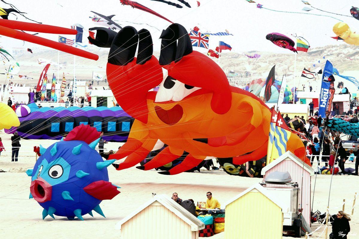 28emes rencontres internationales de cerfs-volants