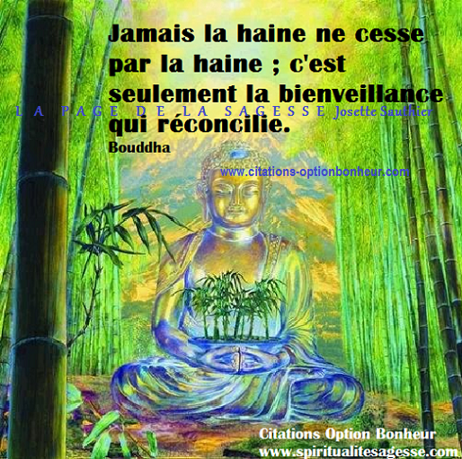 Fabulous Citation de Bouddha sur la haine - Le Nirvana Panneaux, citations  UQ44
