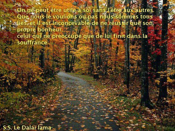a refaire dalaï