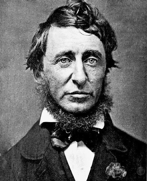 486px-Henry_David_Thoreau.jpg