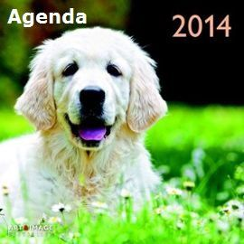 calendrier-2014-chiens-dogs-a-30-x-30-cm-958934740_ML.jpg