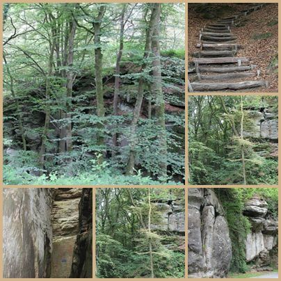 Collage Mullerthal