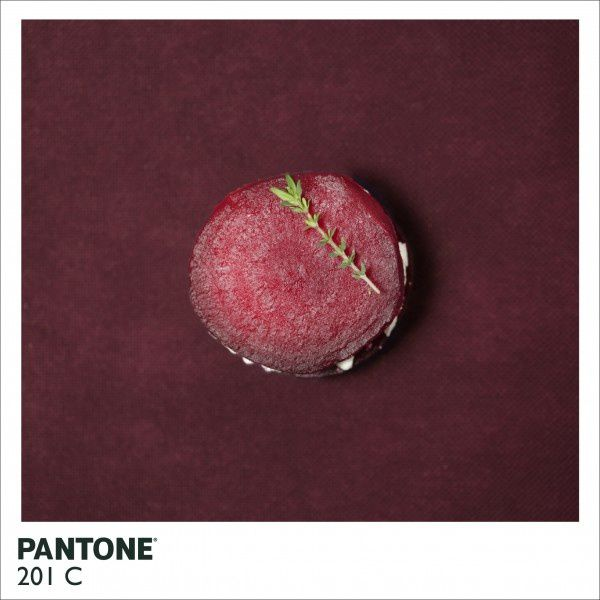pantone-food-beetroot