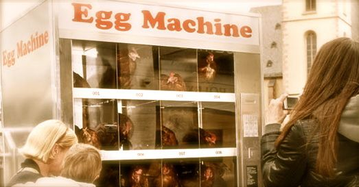 The-Egg-Machine