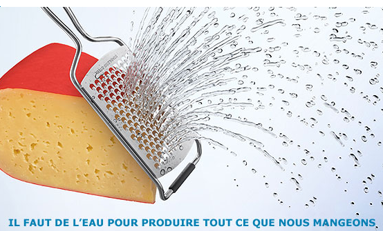 agriculture-production-alimentaire-besoin-eau