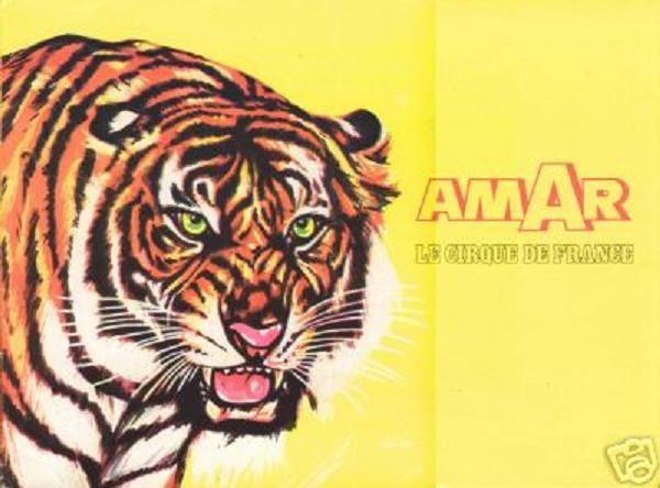 Amar1978