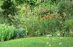 jardindevivaces.jpg