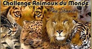 challenge animaux du monde