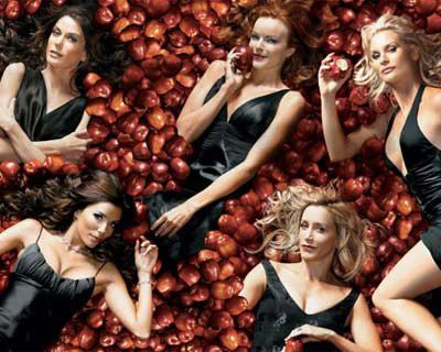 Desperate-Housewives-Saison-2.jpg