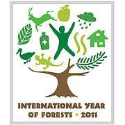 international year of forests logo 30068