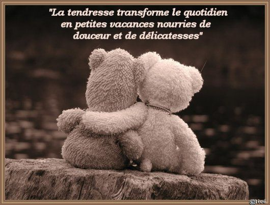 TENDRESSEOURSONSACOLLER