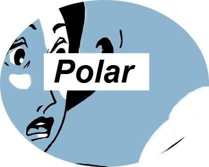 rond bouton blog 3 polar